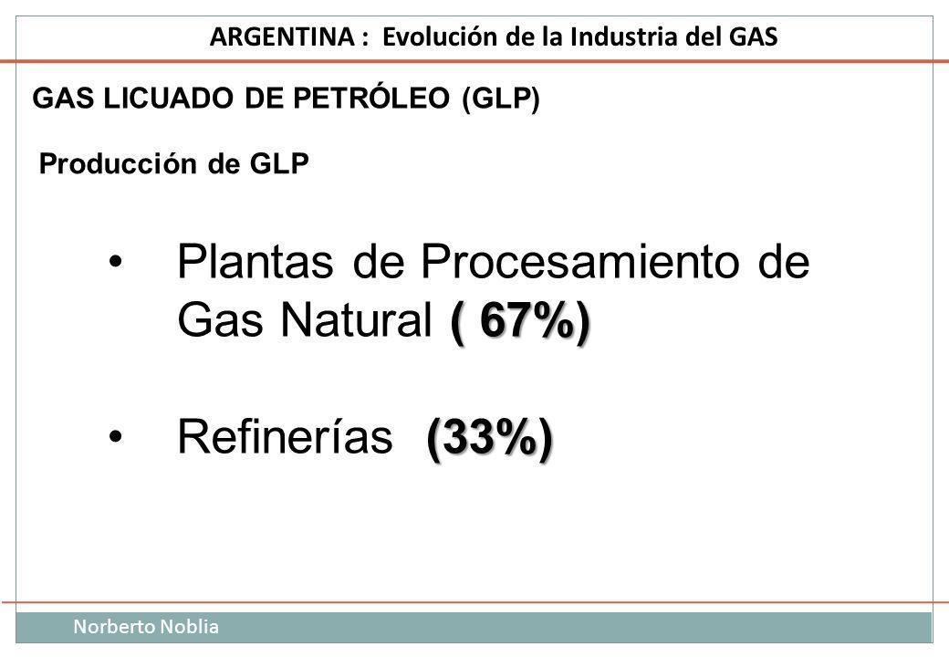 Plantas de Procesamiento de Gas Natural ( 67%)