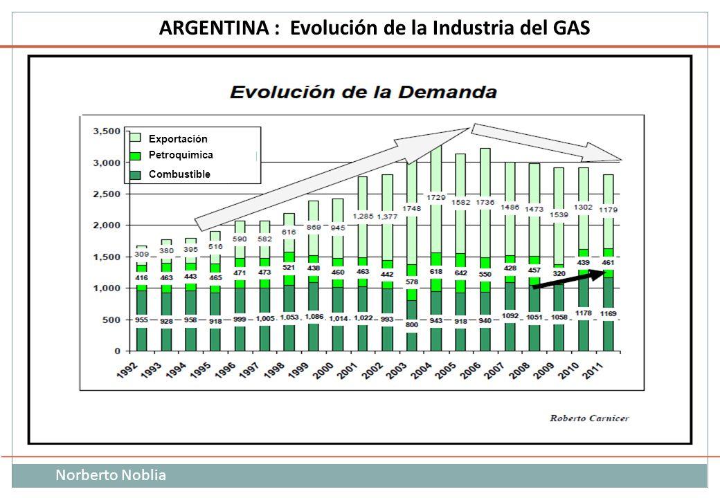 Exportación Petroquímica Combustible