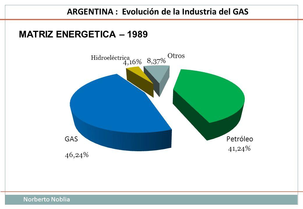 MATRIZ ENERGETICA – 1989