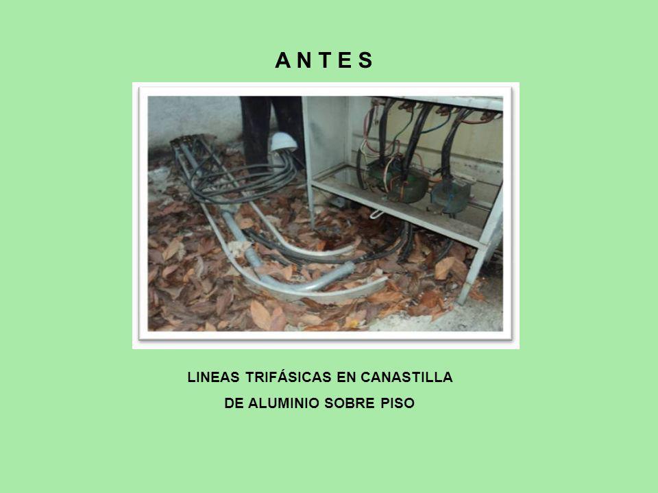 LINEAS TRIFÁSICAS EN CANASTILLA