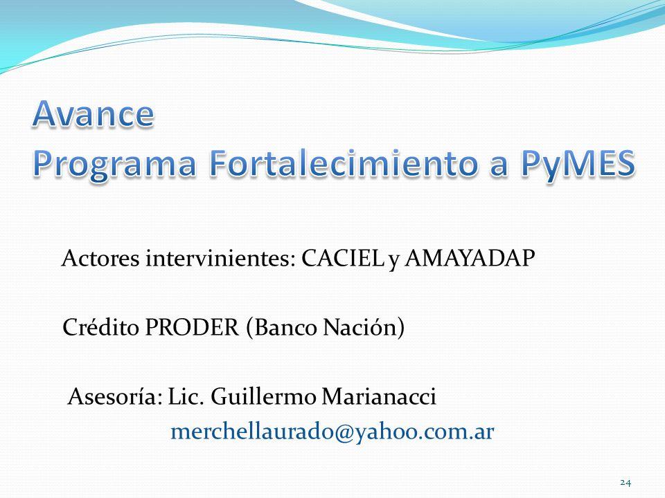 Avance Programa Fortalecimiento a PyMES