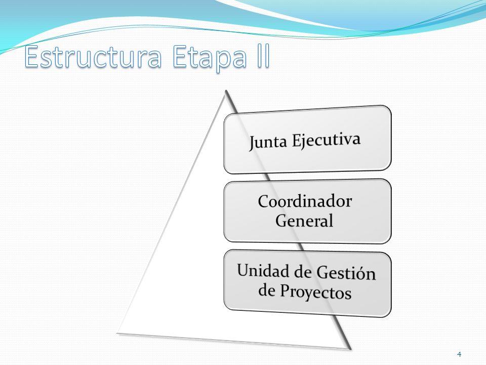 Unidad de Gestión de Proyectos