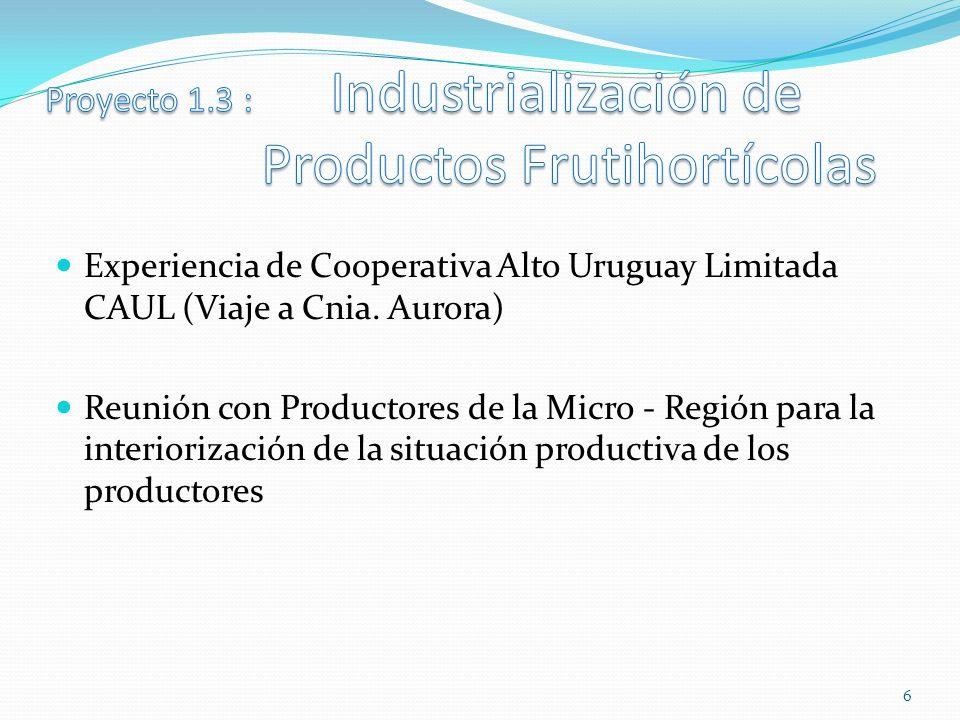 Proyecto 1.3 : Industrialización de Productos Frutihortícolas