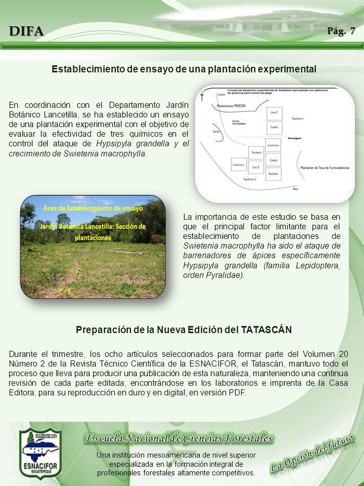 DIFA Escuela Nacional de Ciencias Forestales La Opción del futuro