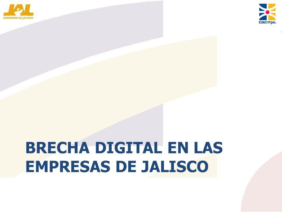 Brecha Digital en las empresas de Jalisco