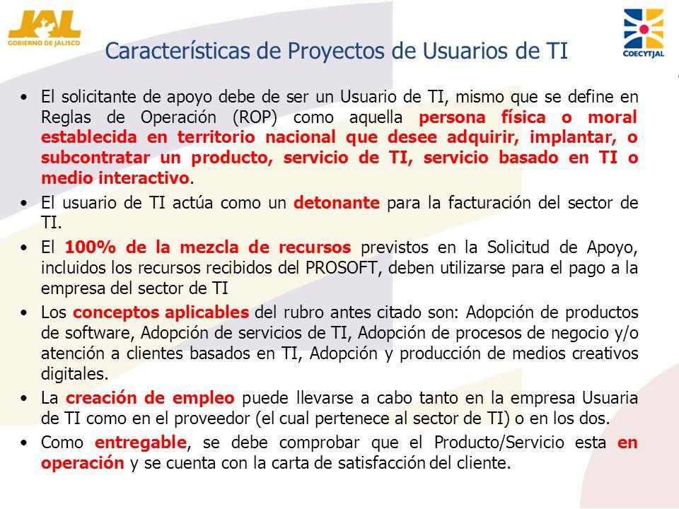 Características de Proyectos de Usuarios de TI