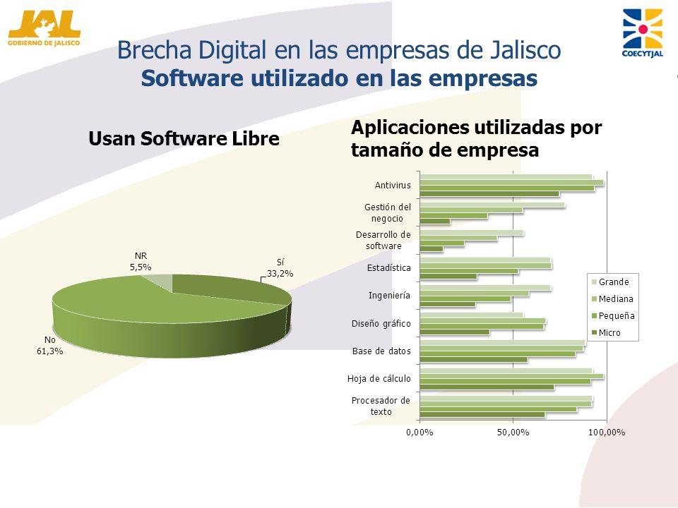 Brecha Digital en las empresas de Jalisco Software utilizado en las empresas