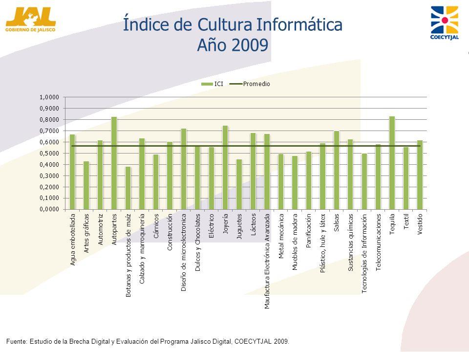 Índice de Cultura Informática Año 2009