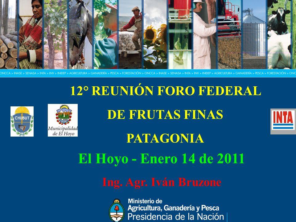 El Hoyo - Enero 14 de 2011 12° REUNIÓN FORO FEDERAL DE FRUTAS FINAS