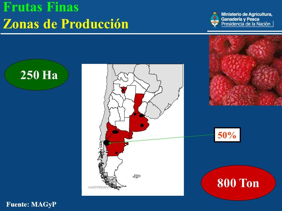 Frutas Finas Zonas de Producción 800 Ton 250 Ha 50% Fuente: MAGyP