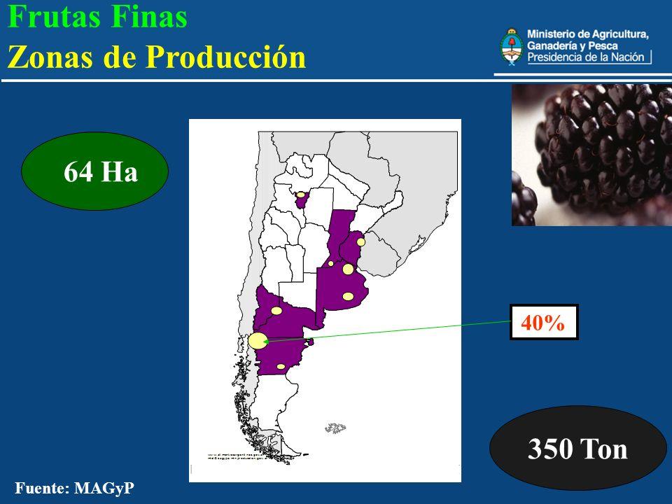 Frutas Finas Zonas de Producción 350 Ton 64 Ha 40% Fuente: MAGyP