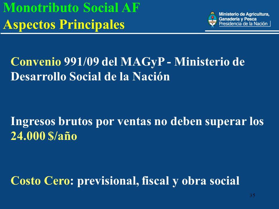 Monotributo Social AF Aspectos Principales