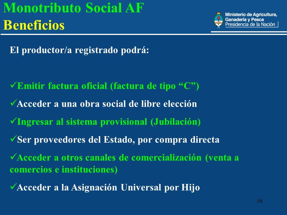 Monotributo Social AF Beneficios
