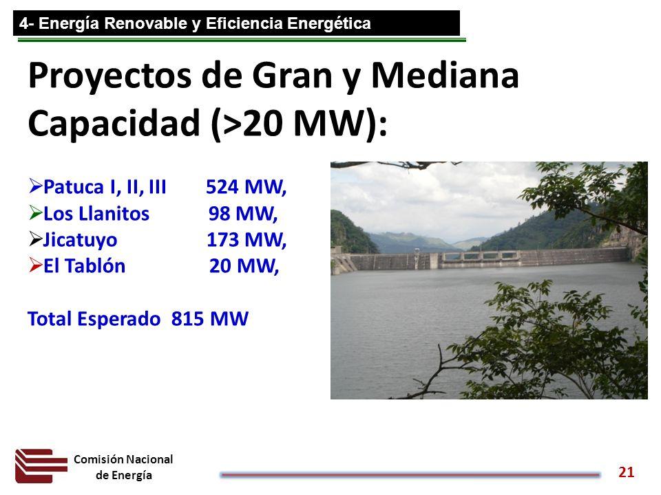 Proyectos de Gran y Mediana Capacidad (>20 MW):