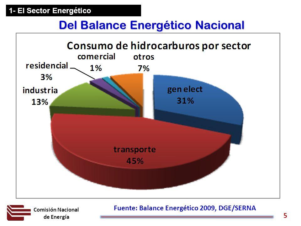 Fuente: Balance Energético 2009, DGE/SERNA
