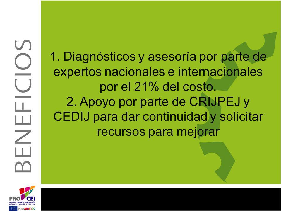 1. Diagnósticos y asesoría por parte de expertos nacionales e internacionales por el 21% del costo.