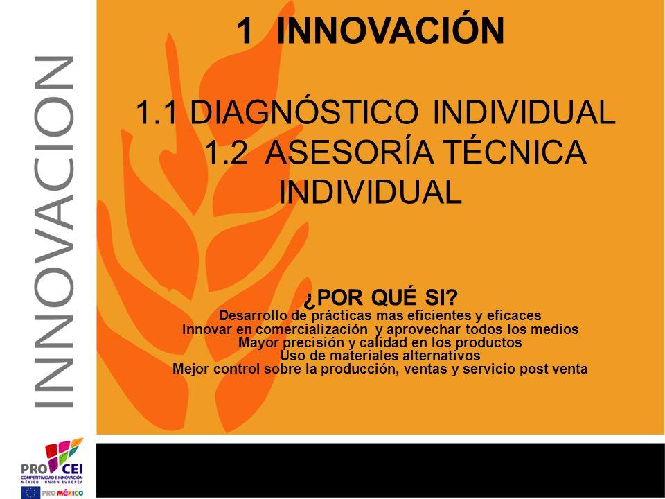 1 INNOVACIÓN 1. 1 DIAGNÓSTICO INDIVIDUAL 1