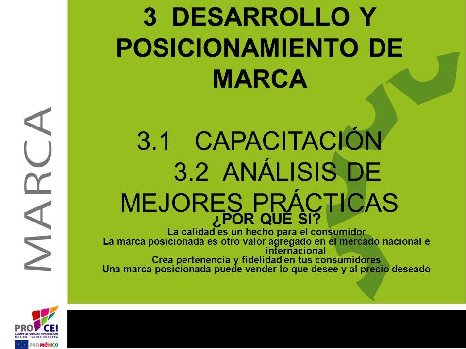 3 DESARROLLO Y POSICIONAMIENTO DE MARCA 3. 1 CAPACITACIÓN 3