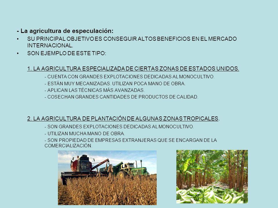 - La agricultura de especulación: