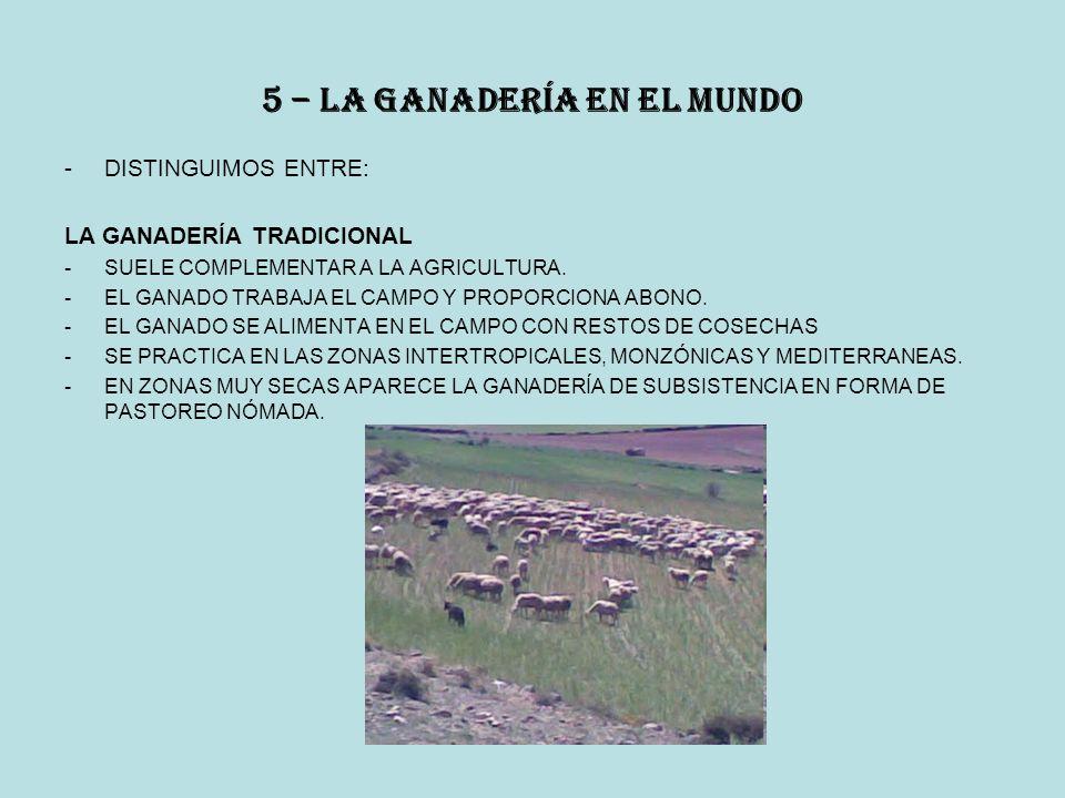 5 – la ganadería en el mundo