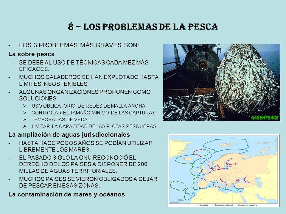 8 – los problemas de la pesca
