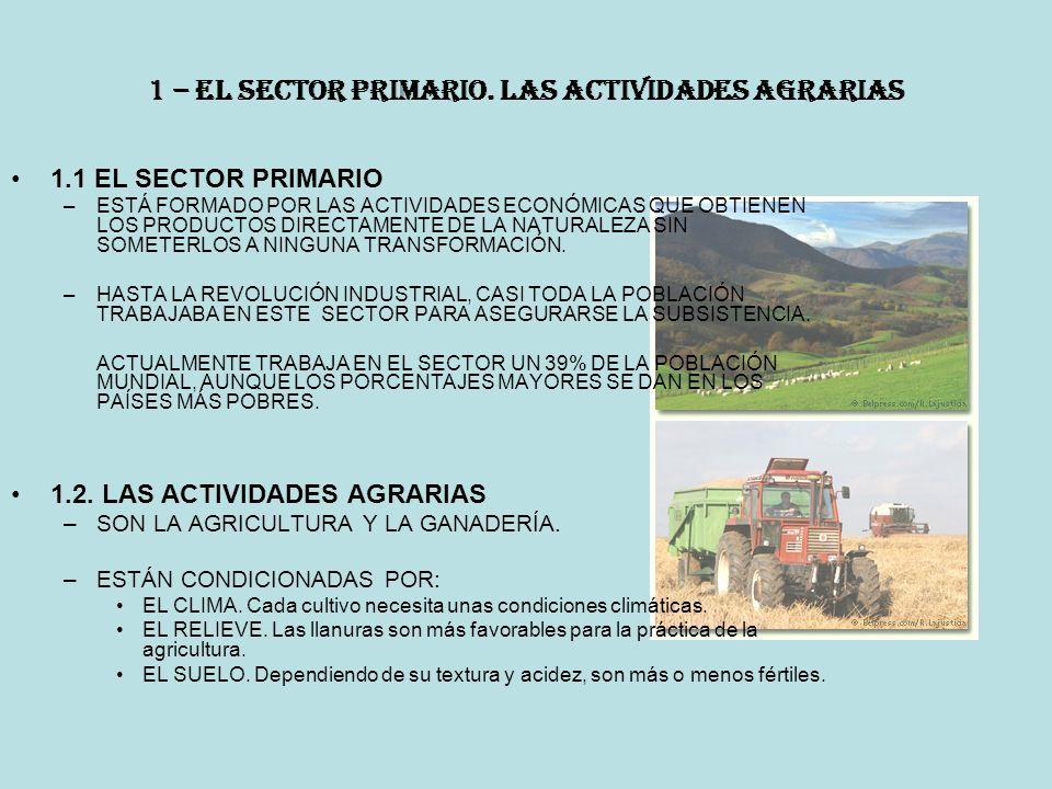 1 – EL SECTOR PRIMARIO. LAS ACTIVIDADES AGRARIAS
