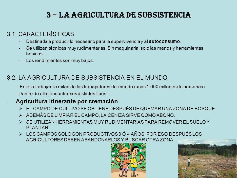 3 – la agricultura de subsistencia