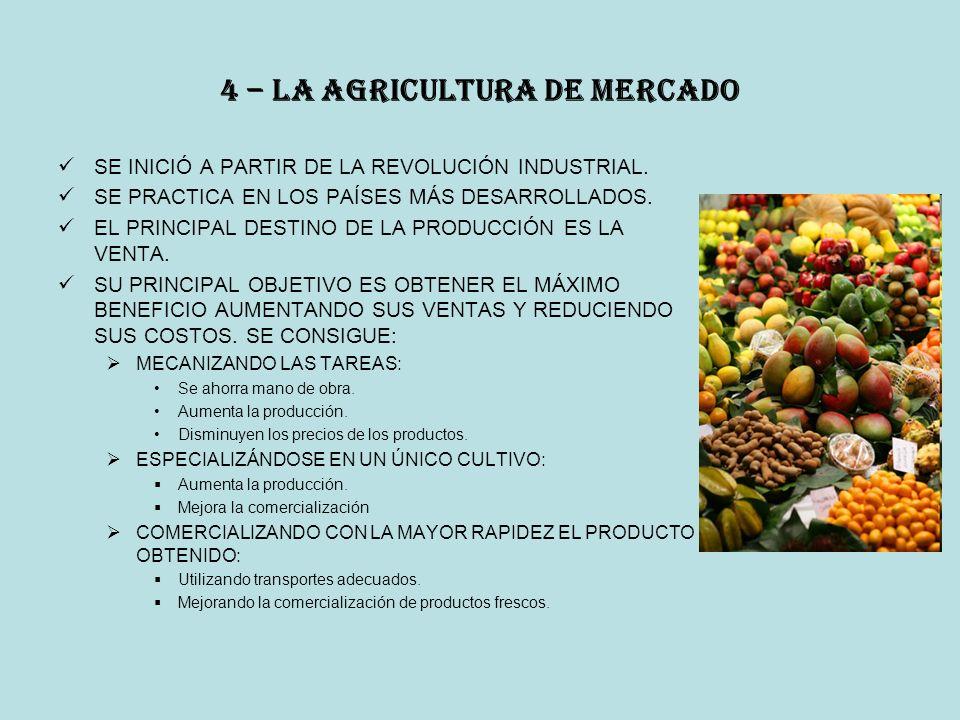 4 – la agricultura de mercado