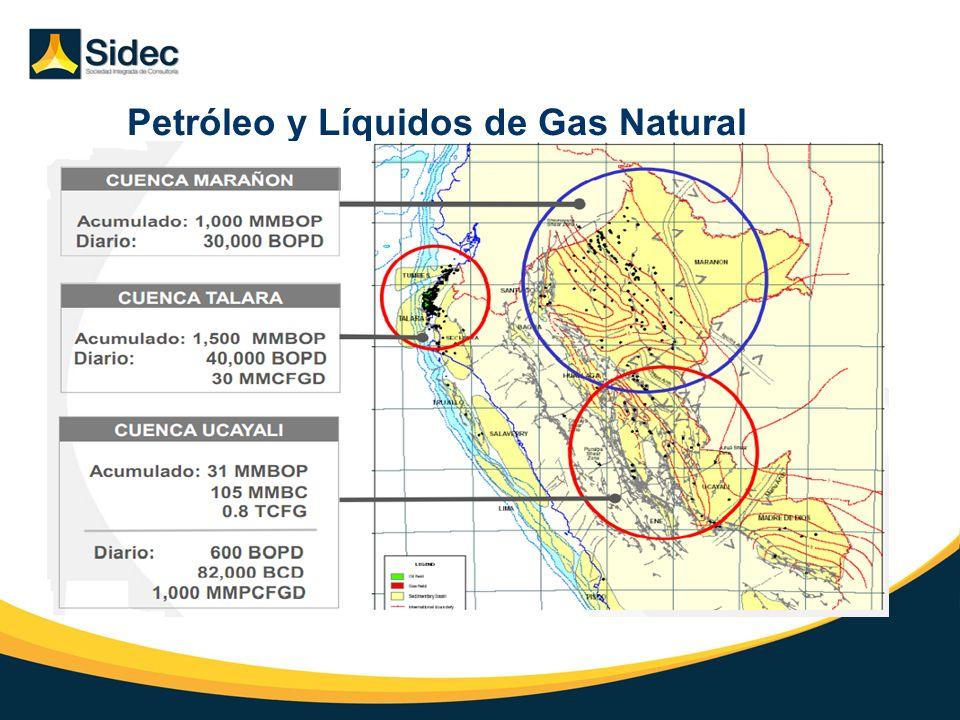 Petróleo y Líquidos de Gas Natural