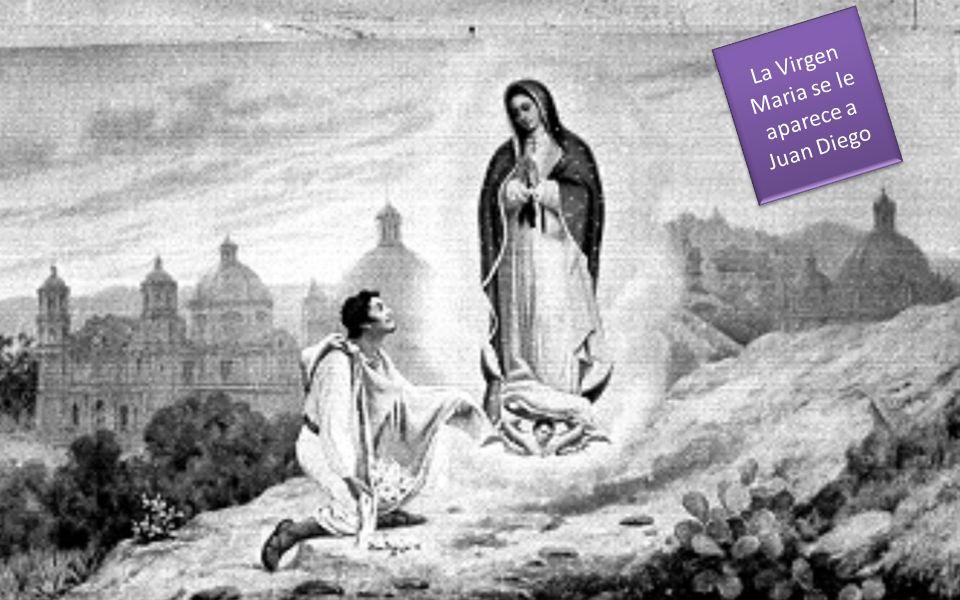 La Virgen Maria se le aparece a Juan Diego