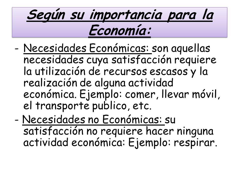 Según su importancia para la Economía: