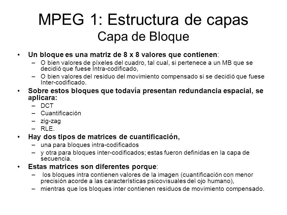 MPEG 1: Estructura de capas Capa de Bloque