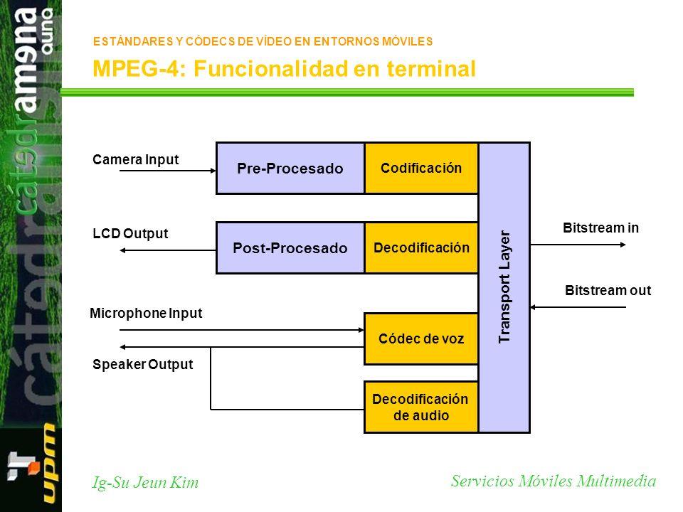 MPEG-4: Funcionalidad en terminal