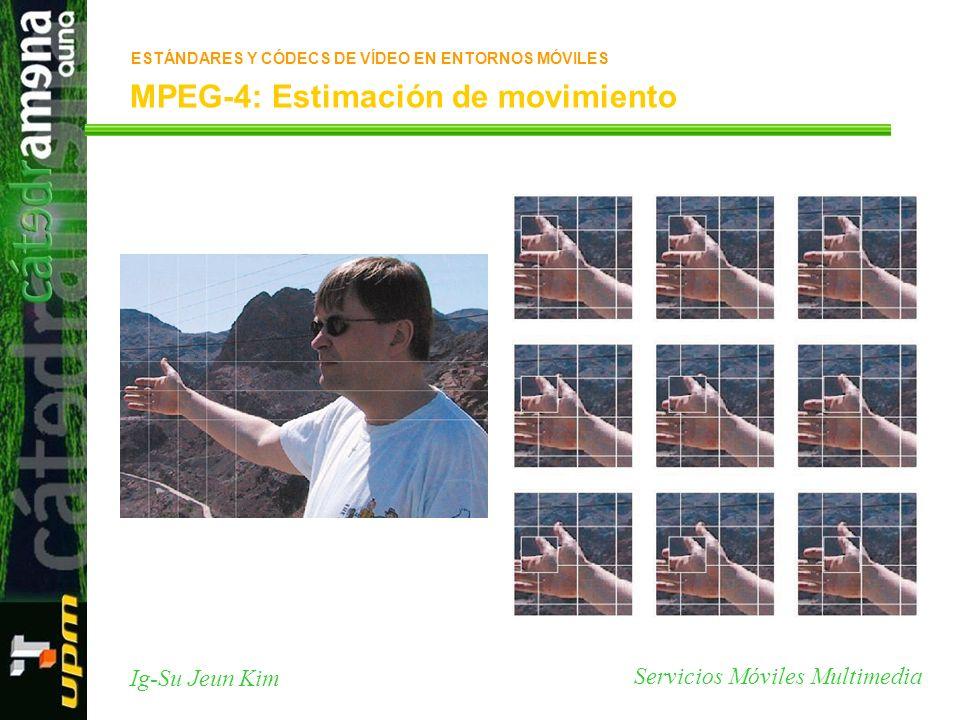 MPEG-4: Estimación de movimiento