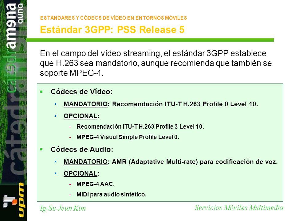 Estándar 3GPP: PSS Release 5