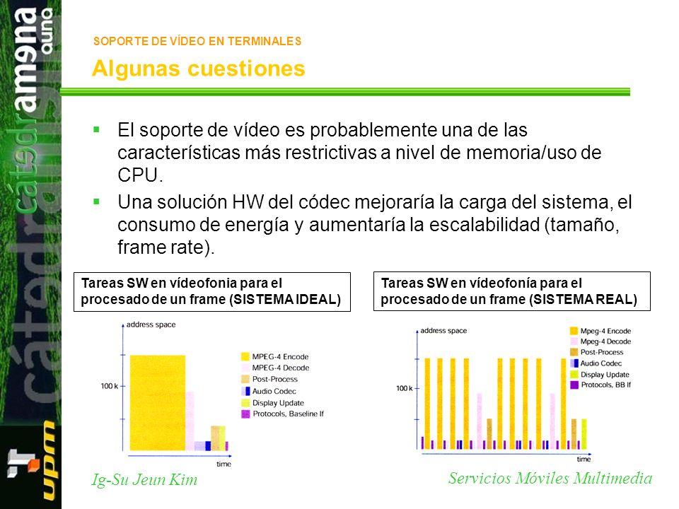 SOPORTE DE VÍDEO EN TERMINALES