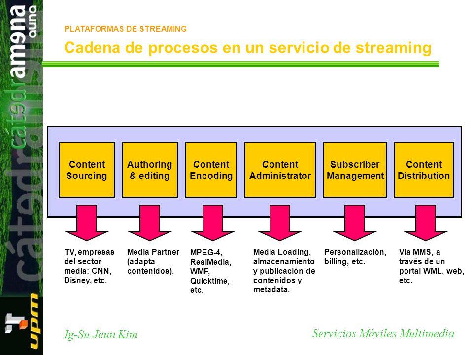 Cadena de procesos en un servicio de streaming