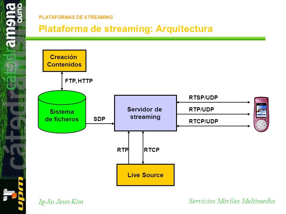Plataforma de streaming: Arquitectura