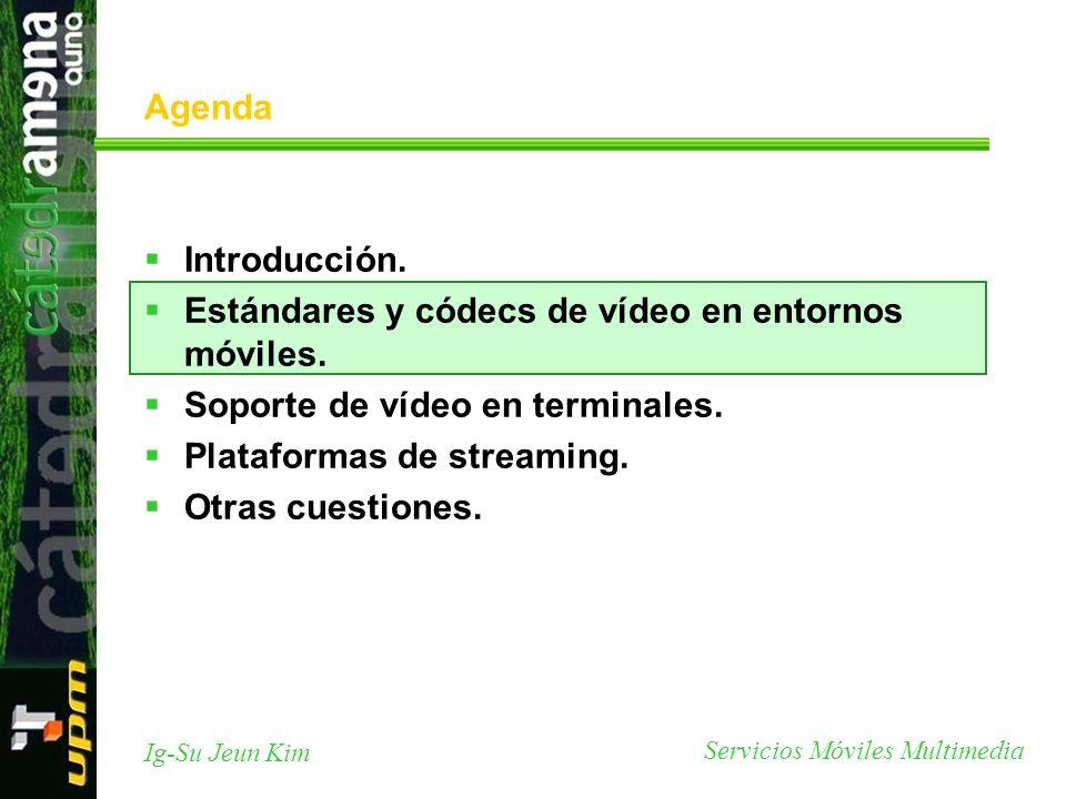 Agenda Introducción. Estándares y códecs de vídeo en entornos móviles. Soporte de vídeo en terminales.