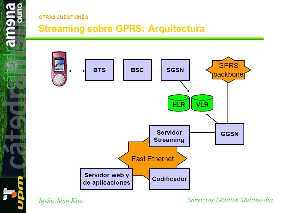 Streaming sobre GPRS: Arquitectura