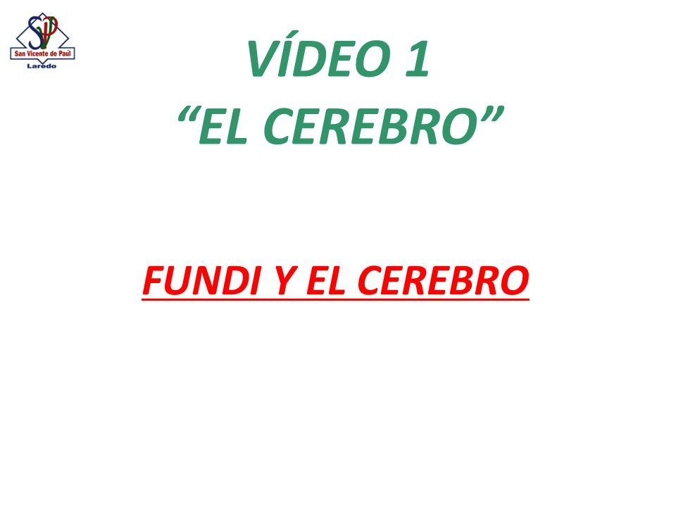 VÍDEO 1 EL CEREBRO FUNDI Y EL CEREBRO