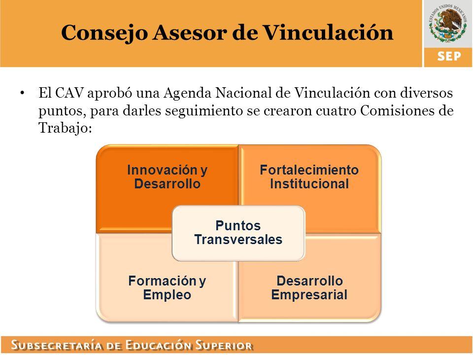 Consejo Asesor de Vinculación