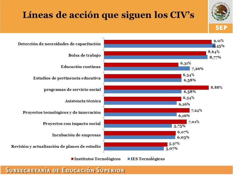 Líneas de acción que siguen los CIV's