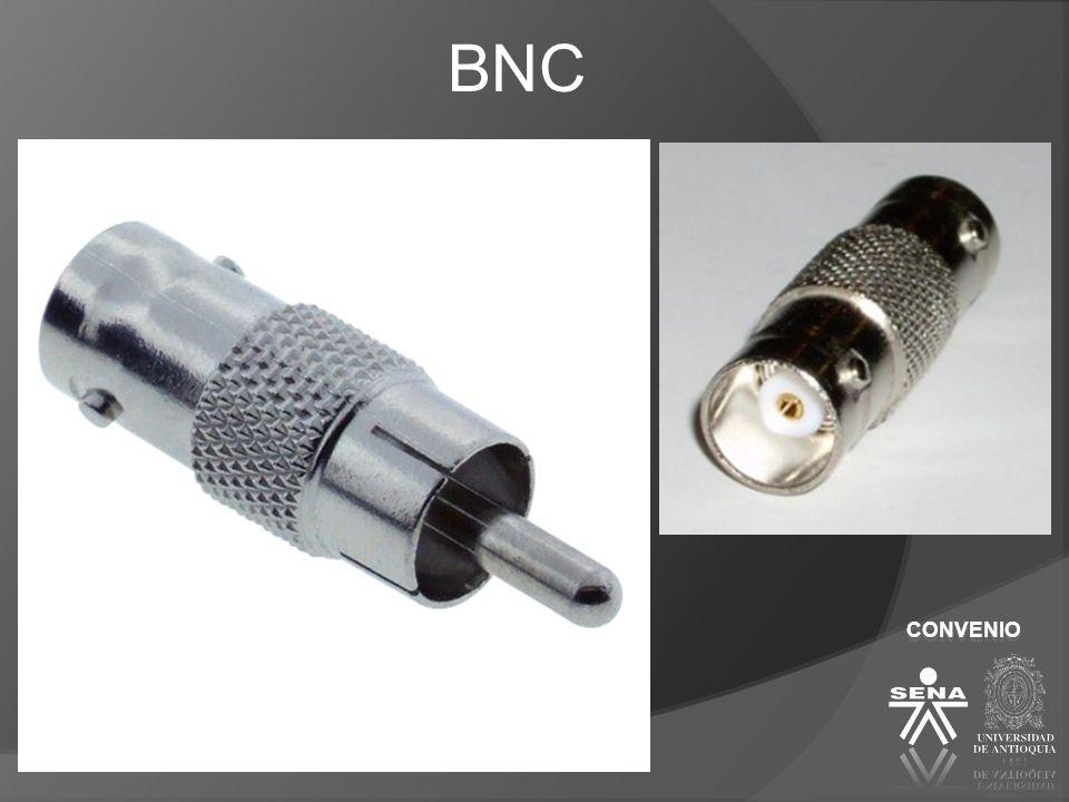 BNC CONVENIO