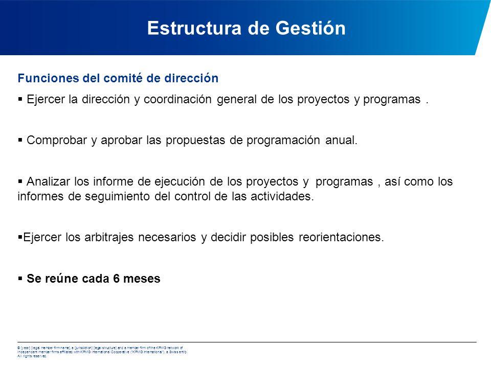 Estructura de Gestión Funciones del comité de dirección