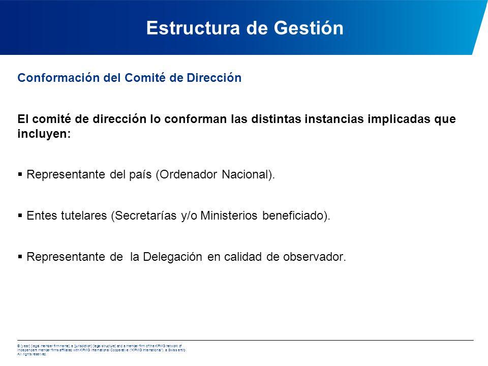 Estructura de Gestión Conformación del Comité de Dirección