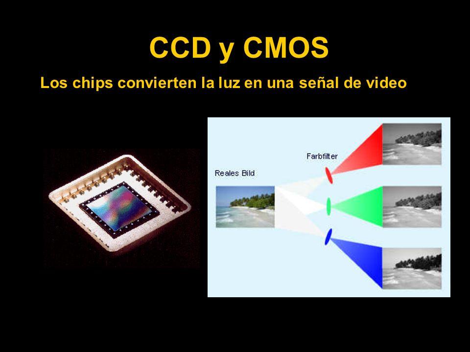 CCD y CMOS Los chips convierten la luz en una señal de video