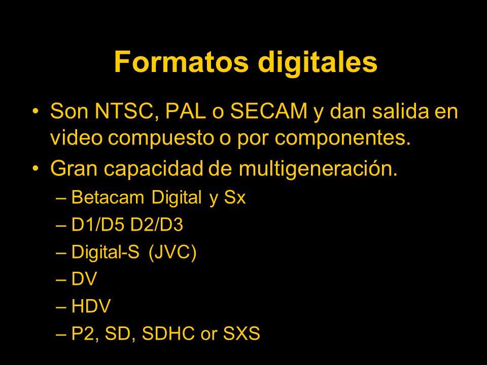 Formatos digitales Son NTSC, PAL o SECAM y dan salida en video compuesto o por componentes. Gran capacidad de multigeneración.