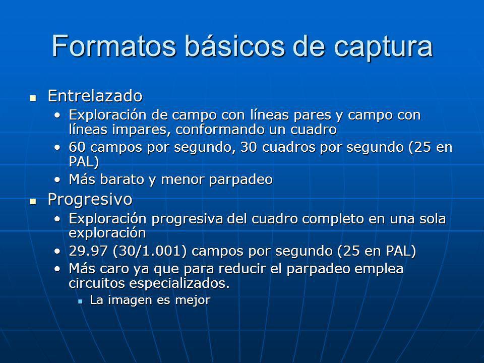 Formatos básicos de captura