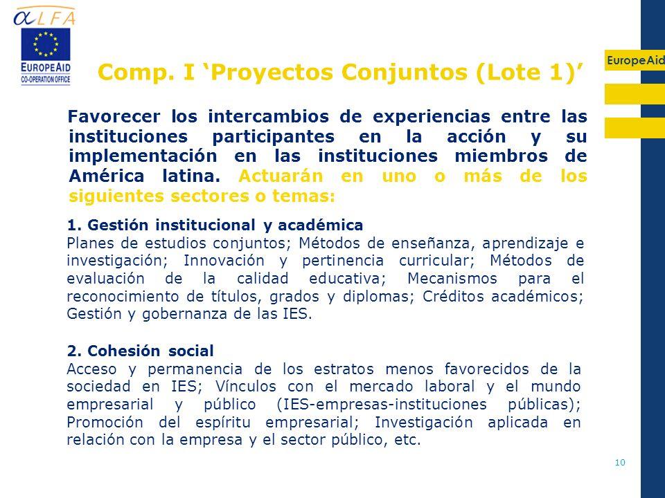 Comp. I 'Proyectos Conjuntos (Lote 1)'